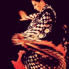 Flamenco Classes Mar Vista Santa Monica
